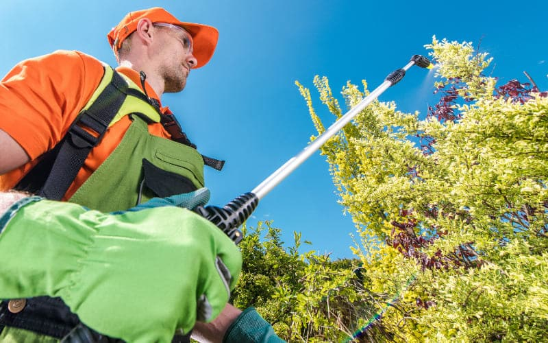 Heads Up For Hiring A Landscape Maintenance Contractor